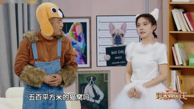 【视频】宋晓峰新小品《猫狗相亲》宠物相亲变攀比大赛,讽刺拜金影射人性